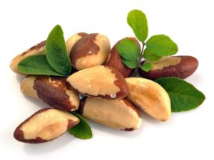 Newport Home Health Agency (Brazil Nuts)